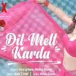 Dil Melt Karda Lyrics Haseen Dillruba